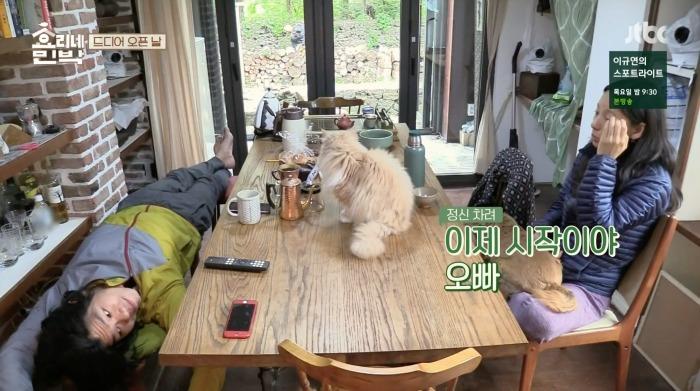 hyori homestay recap