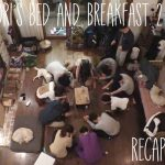This is the recap for the Korean variety show Hyori's Bed and Breakfast season 2, episode 9