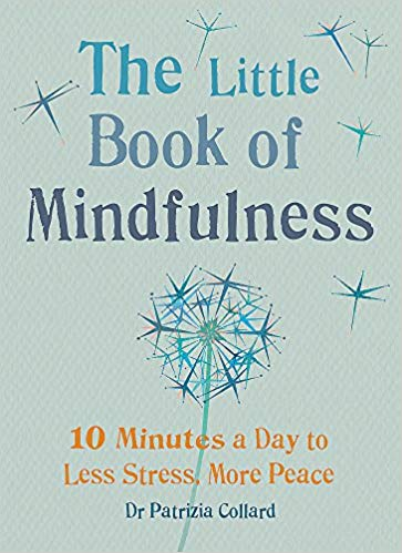 Holiday Gift Guide 2018 book of mindfulness