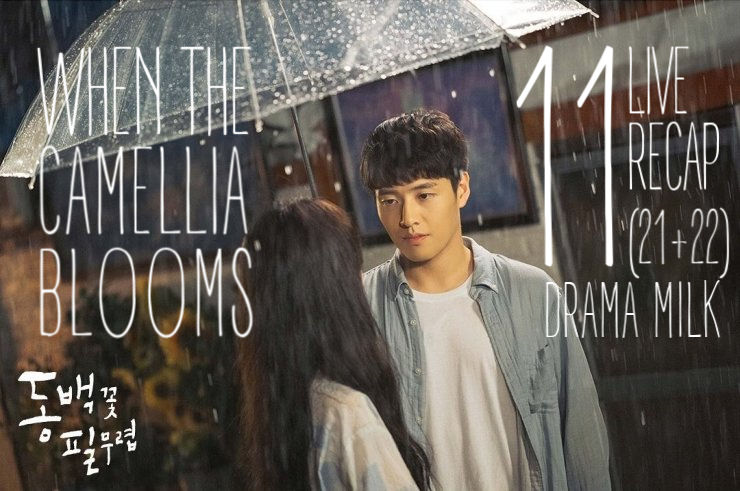 When the Camellia Blooms Episode 11 (21 & 22) Recap