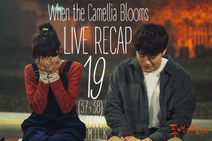 When the Camellia Blooms Episode 19 (37 & 38) Recap