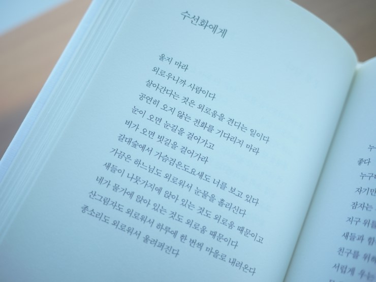 Poem 'To Daffodil' from Korean Drama When the Weather is Fine